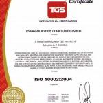 ISO 10002 2004-old-en